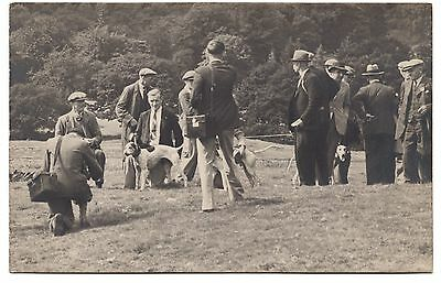 Greyhound Dogs And Owners Winners Of The Hound Trials Old Real Photo Postcard
