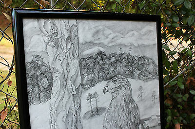 **on Sale!  Bird Art- Hawk Drawing By Artist Sunset Gypsy- Graphite- Nature Art
