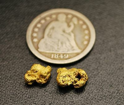 1.62 Grams of Rare Natural Montana Gold Nuggets 2pcs. Hand Dug from Western MT.