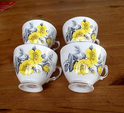 Four Royal Vale Cups 7979 Pattern  (LAST ONES)