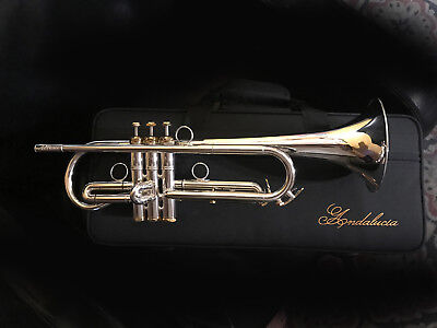 Andalucia AdVance Phase III Bb Soprano Bugle K20 Bell