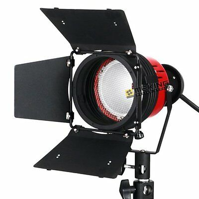 300W Meking Continuous Lighting Redhead Light For Film&Camera