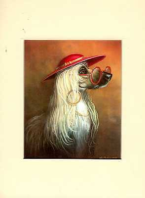 """MOUNTED  8"""" x  6""""  HUMOROUSE OIL PAINTING PRINT of AFGHAN HOUND    DOG"""