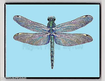 METAL MAGNET Stained Glass Look Dragonfly Turquoise Background Insect MAGNET X