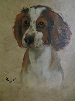 Oil Painting Of A Springer Spaniel Puppy On Canvas Panel Signed