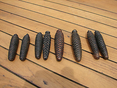 Black Forest 8 X Vintage Fir Pine Cones Cuckoo Clock Metal Weights Global Ship
