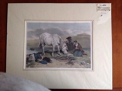 c1850 Coloured engraving of Pony:Painting by Edwin Landseer Engraved by Alais.