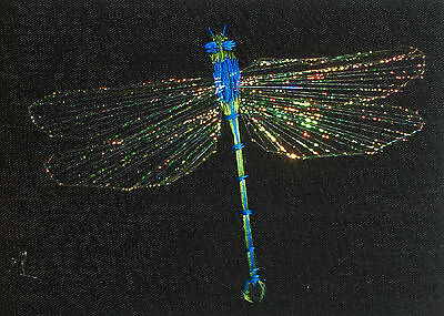 """ACEO Original """"The Dragonfly"""" Emperor - Silk Hand Embroidery - A Lobban"""