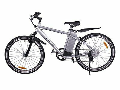 Silver Electric Mountain Bike Off-Road Bicycle Ebike SLA 300W 24V 20MPH