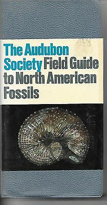 The Audubon Field Society Field Guide to North American Fossils