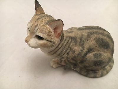 Country Artists Patient Tabby Cat Model