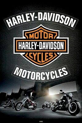 HARLEY DAVIDSON MOTORCYCLES ~ LEATHER 24x36 BIKER POSTER ~ Motorcycle