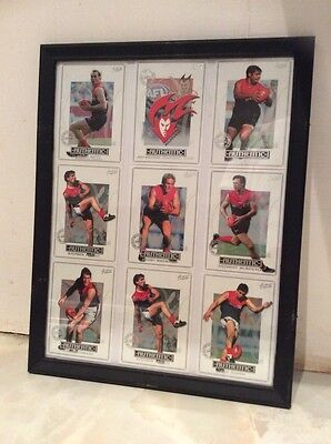 MELBOURNE DEMONS AUSTRALIAN RULES FOOTBALL OFFICIAL 2001 Framed Collector Cards