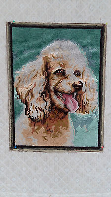 """Hand worked completed wool French tapestry """"Poodle""""  23cm x 30cm (approx9""""x12"""")"""