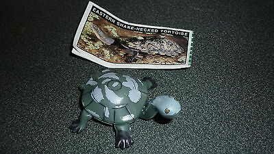 Colectable Australian Yowie Toy With Papers, Eastern Snake Necked Tortoise