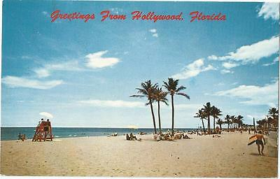 Greetings From Hollywood Florida Koppel Color Postcard