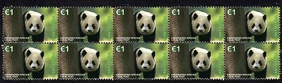 Giant Panda E/s Strip Of 10 Mint Vignette Stamps 1