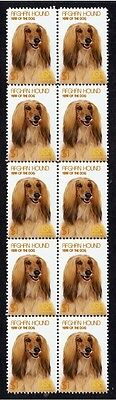 Afghan Hound Year Of The Dog Strip Of 10 Mint Stamps 2