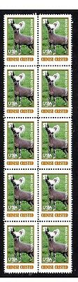 Chinese Crested Dog Mans Friend Strip Of 10 Stamps#4