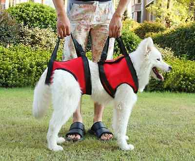 Adjustable Dog Lift Injury Support Fore legs and Hind Legs - Large by Jhua Soft