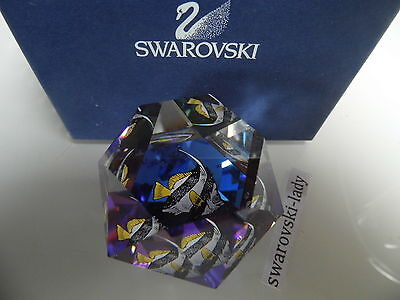 Swarovski Crystal  Paperweight Fish Harmony Italy scs Paperweight