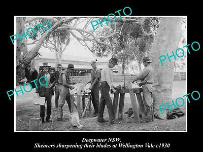 Old Large Historic Photo Of Deepwater Nsw, Shearers Sharpening Their Blades 1930