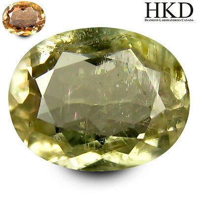 DIASPORE RARE NATURAL UNTREATED STONE 1.O8Ct WITH HKD AUTHENTICATION  MF5001