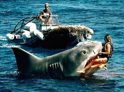 Jaws Bloody Body Eaten By Jaws Great White Shark Movie 8X10 Photo Photograph
