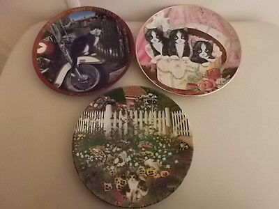 3 Collector Cat Plates - Black And White Cats