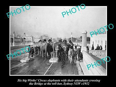 Old Large Historic Photo Of Wirths Circus Elephants At The Bridge Toll 1932 1
