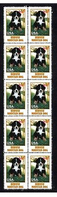 Bernese Mountain Dog Strip Of 10 Mint Stamps #4