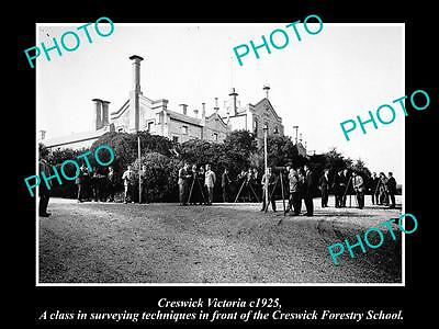 OLD LARGE HISTORIC PHOTO OF CRESWICK VICTORIA, VIEW OF THE FORESTRY SCHOOL c1925