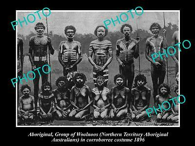 OLD LARGE HISTORIC PHOTO OF ABORIGINAL WOOLNOOS IN CORROBOREE COSTUMES c1896, NT