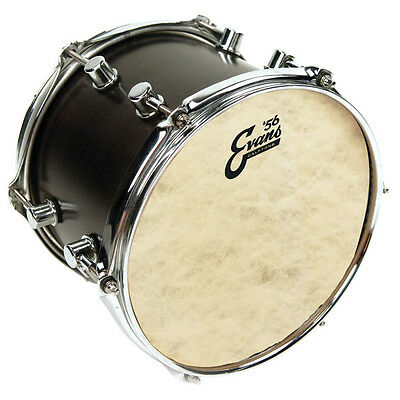 "Evans Genera Calftone Tom/Snare Heads - 8"" - 18"",  Free Express Delivery"