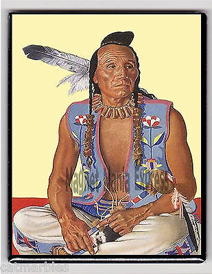 METAL MAGNET Native American Indian Man Blue Vest Feathers MAGNET X