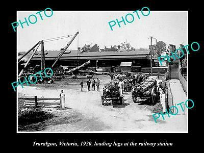 Old Large Historic Photo Of Traralgon Vic, Loading Logs At Railway Station 1920