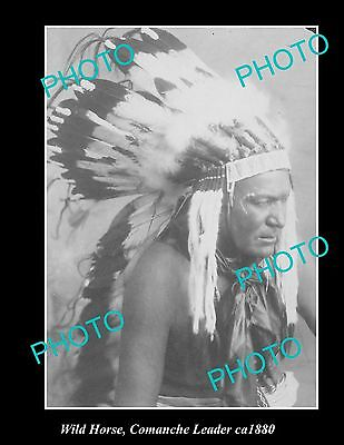 OLD LARGE HISTORIC PHOTO OF INDIAN COMANCHE LEADER WILD HORSE c1880