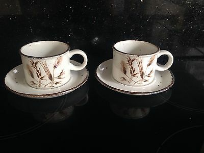 Retro Midwinter Wildoats 2X Cup And Saucers