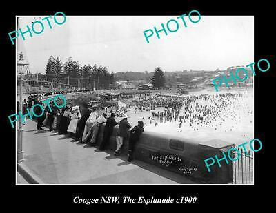 OLD LARGE HISTORIC PHOTO OF COOGEE NSW, VIEW OF ESPLANADE c1900