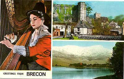 Greetings from Brecon - Wales - Multiview - Postcard  1982
