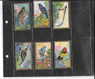 Cavanders - Feathered Friends  / Foreign Birds - 6 Cards - 1926