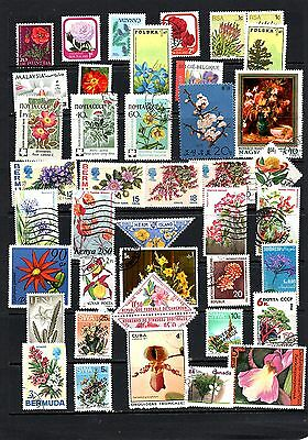 Thematics 40 All Different Collection 24 Flowers