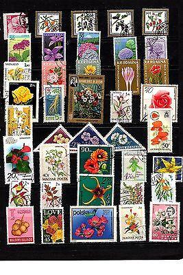 Thematics 40 All Different Collection 26 Flowers
