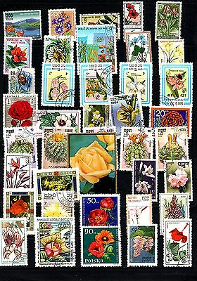 Thematics 40 All Different Collection 27 Flowers