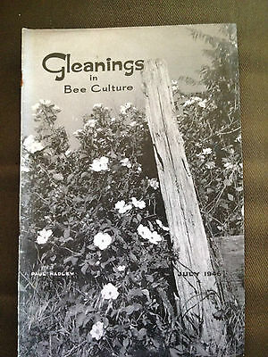 July 1946 Gleanings In Bee Culture (Usa Bee Keeping Magazine)