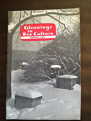 Feb 1952 Gleanings In Bee Culture (Usa Bee Keeping Magazine)