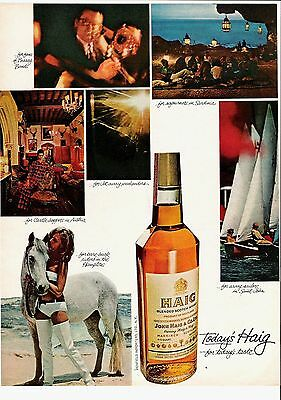 1966 For Today's Taste Haig Scotch Whiskey Ad