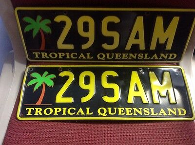 Personalised number plate tropical qld 29SAM