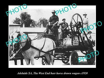 OLD LARGE HISTORIC PHOTO OF ADELAIDE SA, WEST END BEER HORSE WAGON c1920