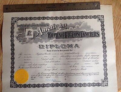 Antique RACING PIGEON DIPLOMA -- 1939 - The International Federation